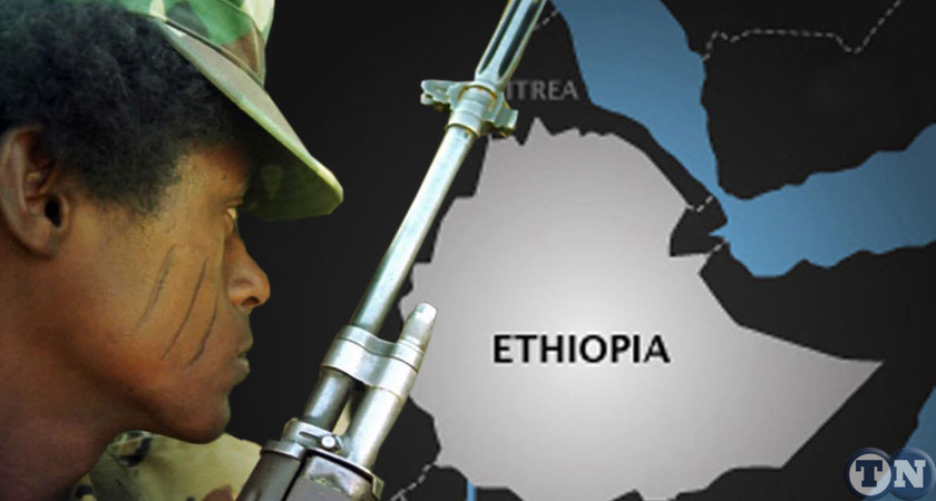 Bundling demarcation with dialogue, Ethiopian leaders desperation