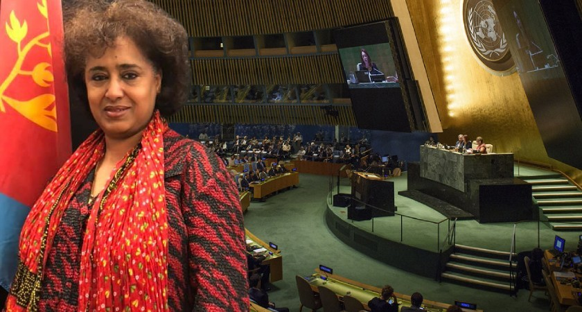 Ambassador Sophia Tesfamariam to the United Nations