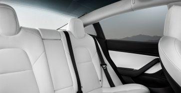 White back seats