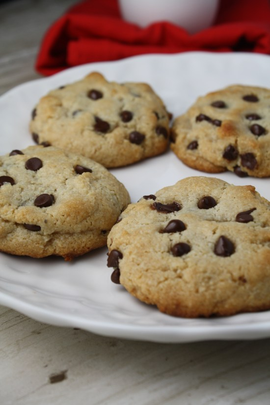 Perfect Grain Free Chocolate Chip Cookies