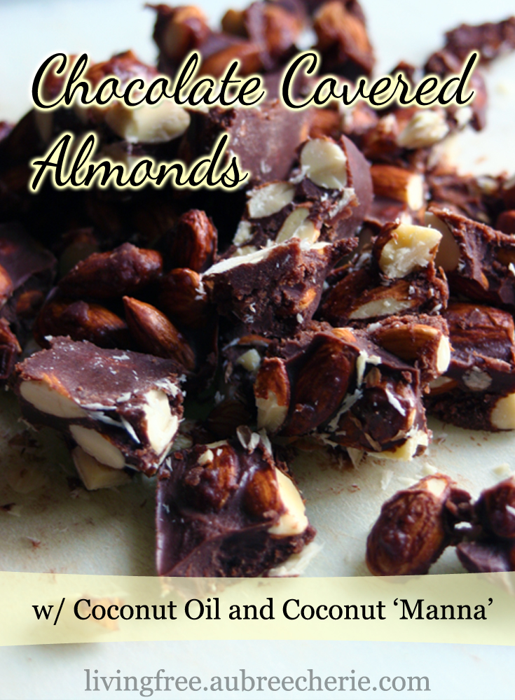 chocolate-covered-almonds2