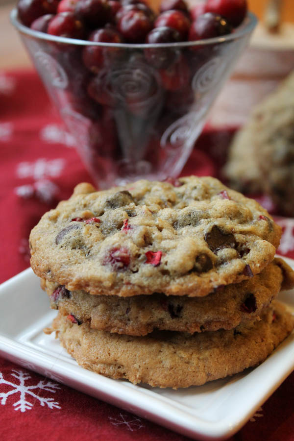 Gluten Free Cranberry Chocolate Cookies-8546