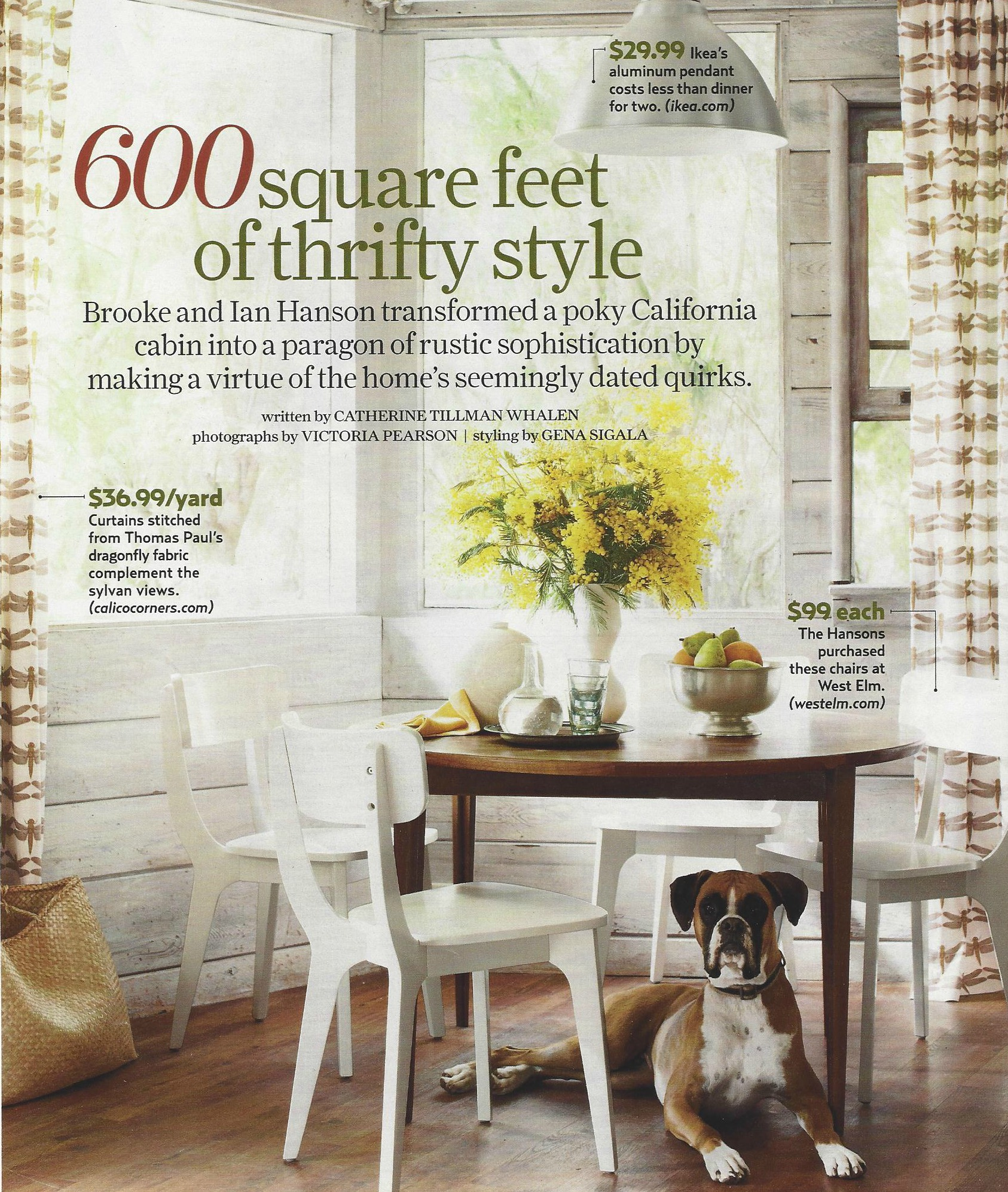 The difference between a customer story and case study for Country living magazine customer service
