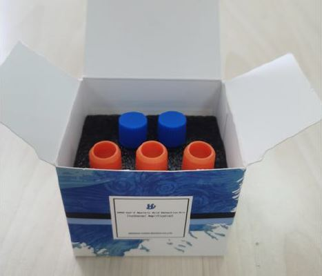 Kit PCR isotherme covid-19 Hydro Biotech