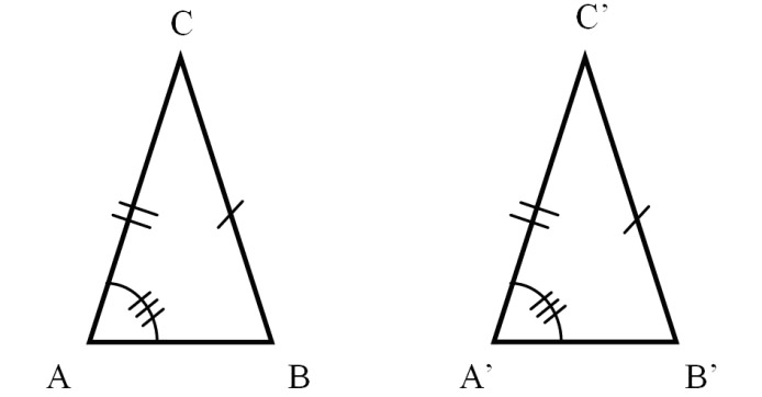 Congruent Triangles Practice Questions and Tutorial