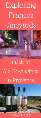 Testaccina and Beyond the Label's Paul Capper visit Aix Rosé in Provence, a premier wine producer focusing on rosé wines, whites and reds.