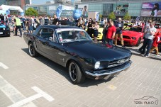 Zlot Ford Mustang (9)