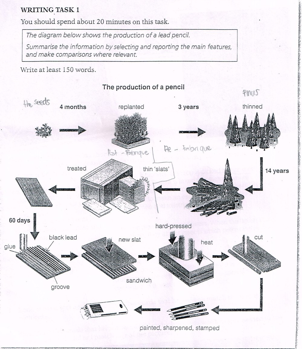 medium resolution of essay topics the diagram below shows the production of a lead pencil