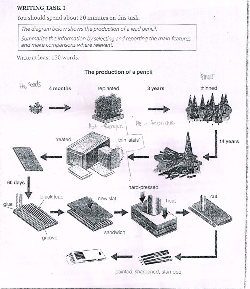 small resolution of essay topics the diagram below shows the production of a lead pencil