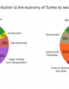 Essay topics the two pie charts below show percentages of industry sectors  contribution to economy turkey in and also rh testbig