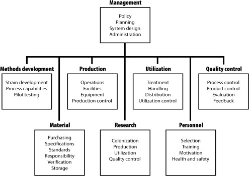 What is Quality Assurance (QA)? Process and Methodology