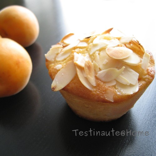 Cake-abricot-amandes-Testi