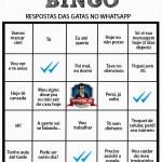 BINGO - Respostas das gatas no whatsapp