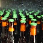 Testosterona Indica - Degustação de cerveja feita com água da chuva e mais