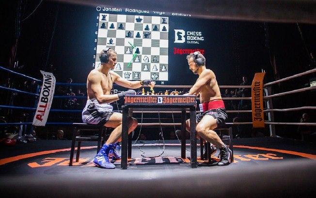 boxe-xadrez