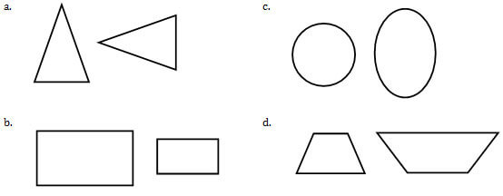 Common Core Mathematics: Geometry Practice Test (Questions)