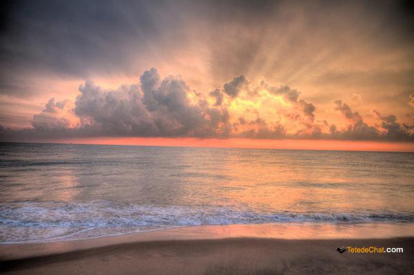 Retour  Negombo  Sri Lanka voyage  TetedeChatcom