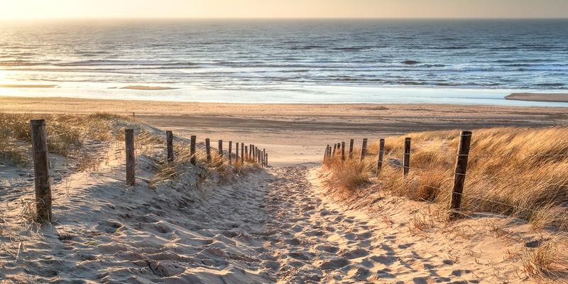 Tuinposter hollands strand pad   Teuns Tuinposters