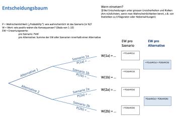 German Translations of Decision Coaching Methods: Entscheidungsmethoden Quantitativ (Ursina Teuscher, PhD)
