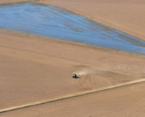 ...another flooded field, and plowing...