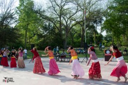 nepali-new-year-2068-celebration-nst-20110410-129