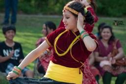 nepali-new-year-2068-celebration-nst-20110410-130