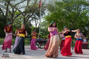 nepali-new-year-2068-celebration-nst-20110410-142
