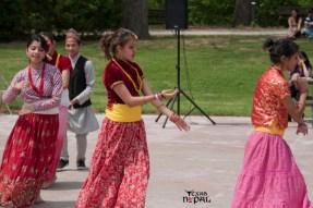 nepali-new-year-2068-celebration-nst-20110410-37