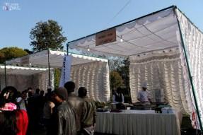 momo-mania-kathmandu-20120310-3