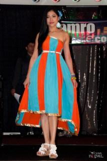 nepali-sanjh-hamro-dallas-20120316-37