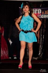 nepali-sanjh-hamro-dallas-20120316-42