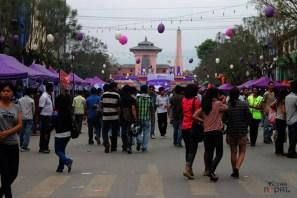 ncell-purple-saturday-kathmandu-20120421-53