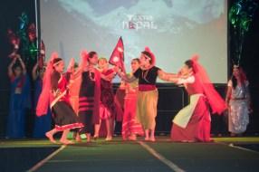 ana-cultural-night-dallas-20120630-116