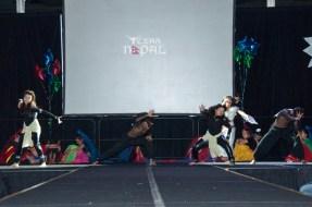 ana-cultural-night-dallas-20120630-128