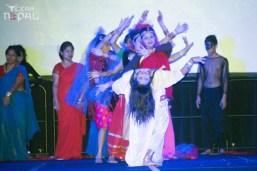 ana-cultural-night-dallas-20120630-135