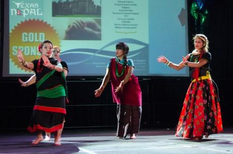 ana-cultural-night-dallas-20120630-161