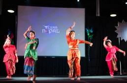 ana-cultural-night-dallas-20120630-18