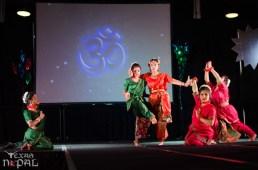ana-cultural-night-dallas-20120630-22