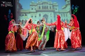 ana-cultural-night-dallas-20120630-71