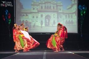 ana-cultural-night-dallas-20120630-73