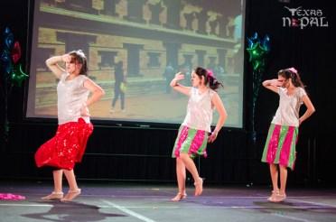 ana-cultural-night-dallas-20120630-83