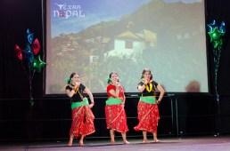 ana-cultural-night-dallas-20120630-92