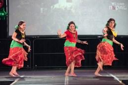 ana-cultural-night-dallas-20120630-94