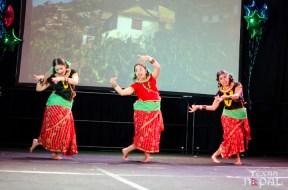 ana-cultural-night-dallas-20120630-95