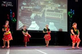 ana-cultural-night-dallas-20120630-97