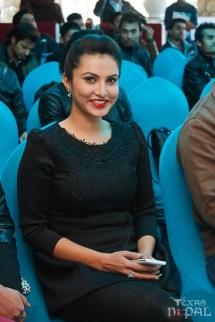 mukhauta-press-meet-2014-1