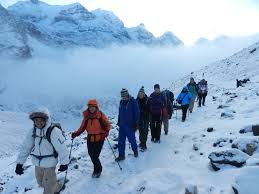 TIMS Cards Mandatory For Foreign Trekkers In Nepal