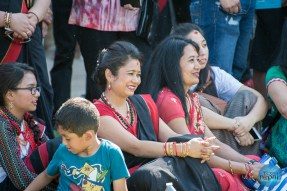 Indra Jatra Celebration 2015 Texas - Photo 134