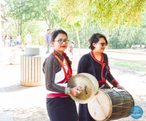 Indra Jatra Celebration 2015 Texas - Photo 16