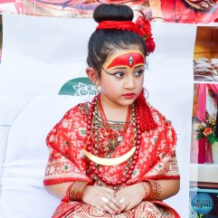Indra Jatra Celebration 2015 Texas - Photo 44
